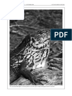 Coti, P. y D. Ariano. 2008. Ecology and traditional use of the Guatemalan black iguana (Ctenosaura palearis) in the dry forests of the Motagua Valley, Guatemala. Iguana 15 (3)