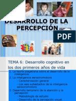 desarrollo de la percepción