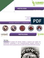 Sistema Linfatico - celulas.pptx