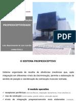 Aula Proprioceptividade 24Abr12