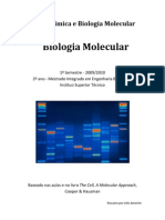 Biologia Molecular Resumo