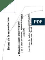 Cerf - Reproduction Et Dynamique Des Populations