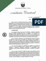 Proyecto Minero PDF