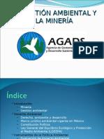 La Gestión Ambiental y La Minería