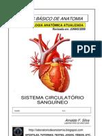 Apostila Anatomia - Sistema Circulatório