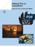 Fire Effects on Soil and Water