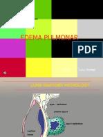 Edema Pulmonar 2012 JulioPontet Para Web