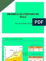 LSO_905 Aula5 Dinamica Do P