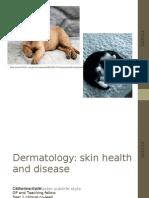 Dermatology Presentation 25 Oct 2012 Final