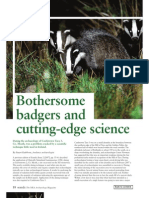 Bothersome Badgers