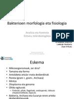 Proka_zitologia
