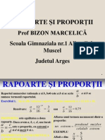 Bizon Marcelica Dls. VI