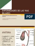 enfermedadesdelasviasbiliares-111011205736-phpapp01