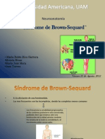 Sindrome de Brown-Sequard (1)
