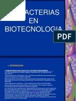Bacterias en Biotecnologia