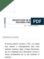 PRODUCCIÓN DE BIOMASA PROTEÍNA UNICELULAR