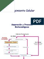 Rompimiento_Celular_introduccion Separación y Procesos Biotecnológicos