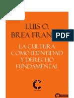 La Cultura Como Identidad y Derecho Fundamental