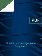 Cinetica de Biorreactores