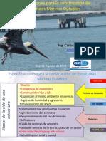 Carlos Arcila - Specs Construccion Estructuras Marinas Durables