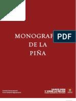 MONOGRAFIA PIÑA2010