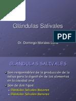 Histologia Del Higado Vesicula y Pancreas