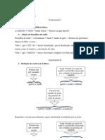 Relatório da pática I e II organica III