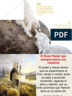 Reflexión sobre el Buen Pastor