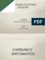 CARBUNCO SINTOMATICO
