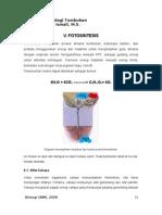 5. FOTOSINTESIS