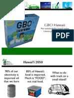 GBO Hawaii-- Supplement Slides (Econ)