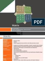 Biometrika - Matriks