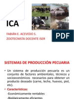 Ica 1
