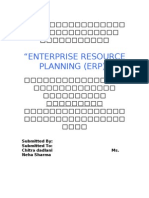 Implementation of Erp