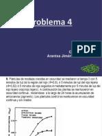 Problema 4 FINAL
