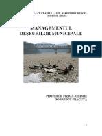 Dobrescu Fraguta Management Mediu
