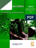 Promoción del cultivo del Palto
