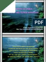 MALEDICÊNCIAS- FOFOCAS-FALATÓRIOS