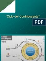 Ciclo Del Contribuyente