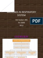 Microbes in Respiratory System
