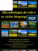 Aula Ciclos Biogeoquimicos