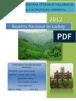 Informe_Lachay