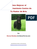 Como Mejorar El Comportamiento Canino de Tu Pastor de Brie