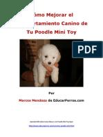 Como Mejorar El Comportamiento Canino de Tu Poodle Mini Toy