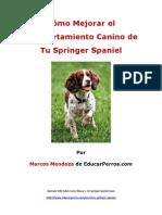 Como Mejorar El Comportamiento Canino de Tu Springer SPaniel