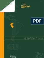 Publicacion Perfil de Los No Viajeros - Provincias 9154