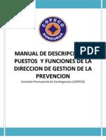 4 - Descripcion de Puestos y Funciones de La Direccion Gestion de La Prevencion Version Final 2010