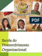 Escola Do Desenvolvimento Organizacional