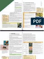 Material de consulta y enunciado de actividades para la recuperación de pendientes