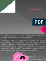Los Tejidos